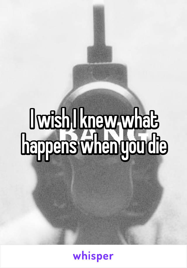 I wish I knew what happens when you die