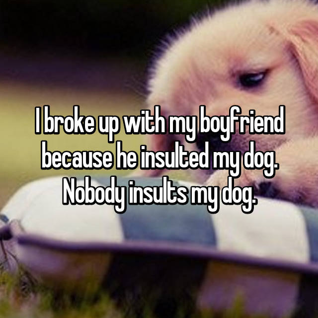 I broke up with my boyfriend because he insulted my dog. Nobody insults my dog.