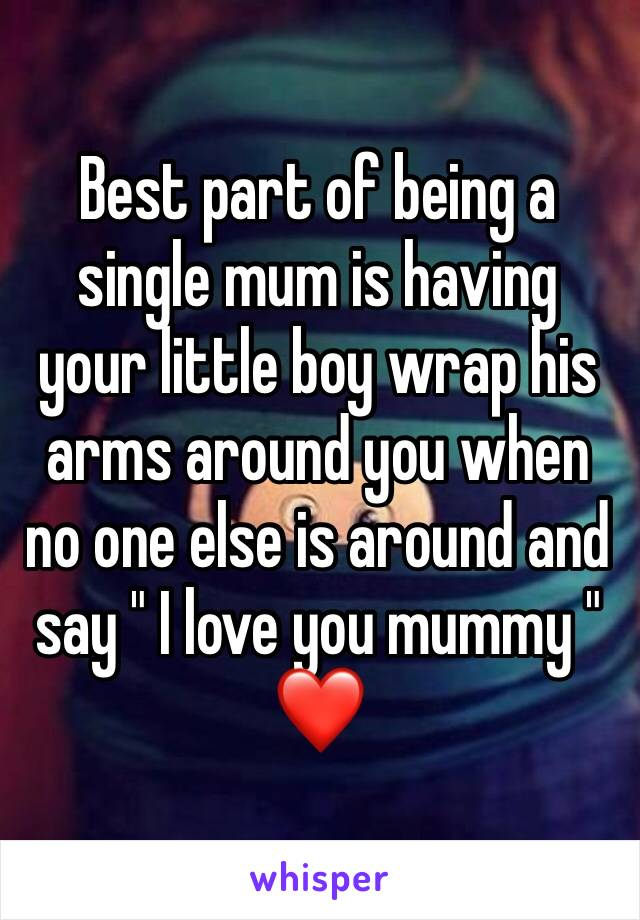 "Best part of being a single mum is having your little boy wrap his arms around you when no one else is around and say "" I love you mummy "" ❤️"