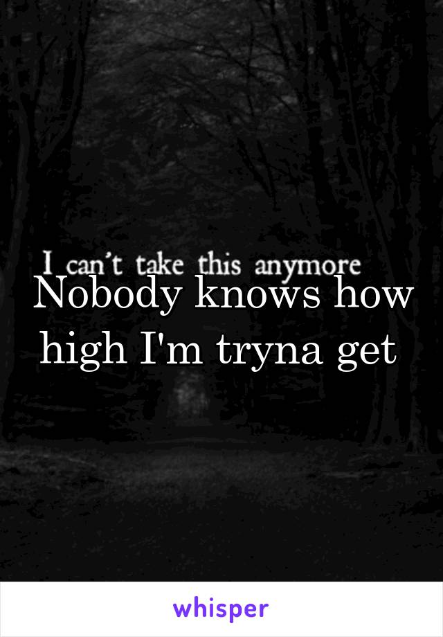 Nobody knows how high I'm tryna get