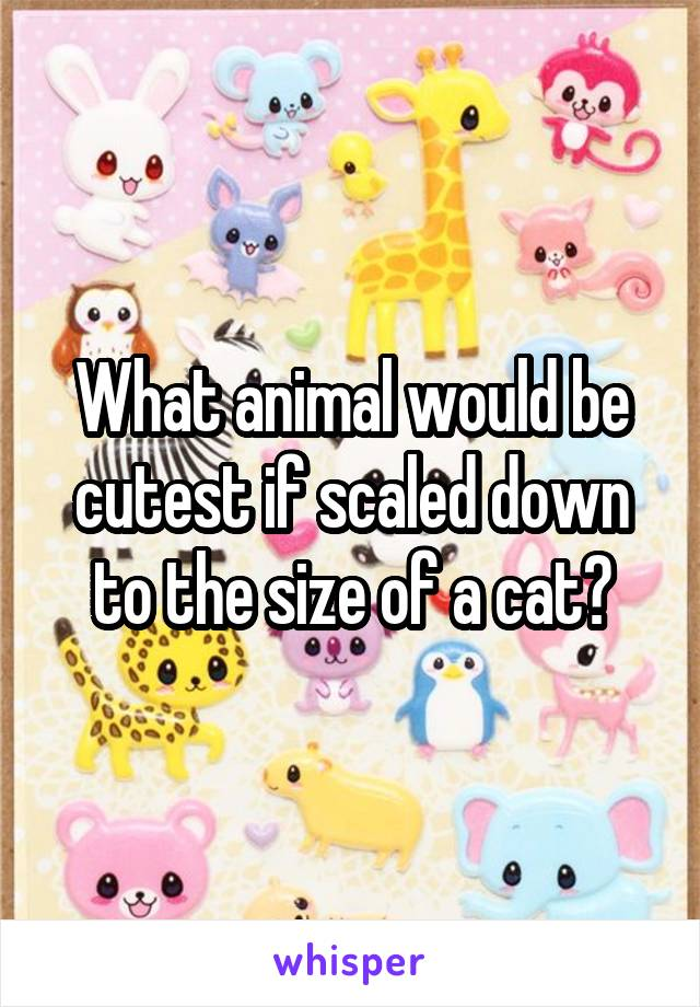 What animal would be cutest if scaled down to the size of a cat?