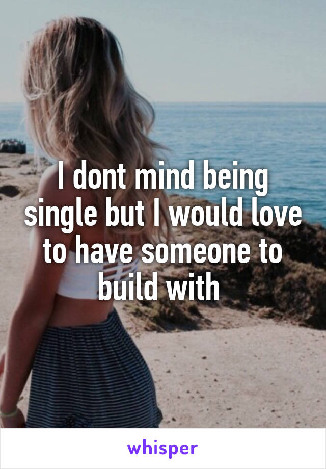 I dont mind being single but I would love to have someone to build with