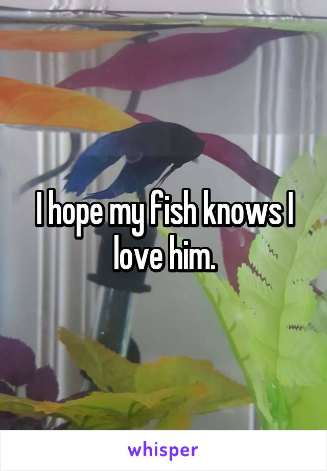 I hope my fish knows I love him.