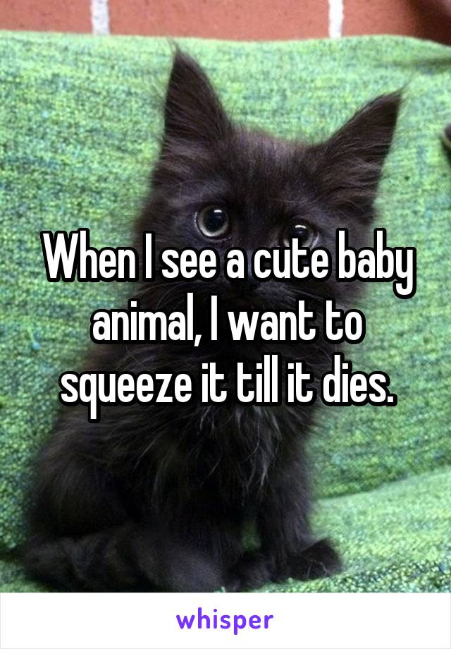When I see a cute baby animal, I want to squeeze it till it dies.
