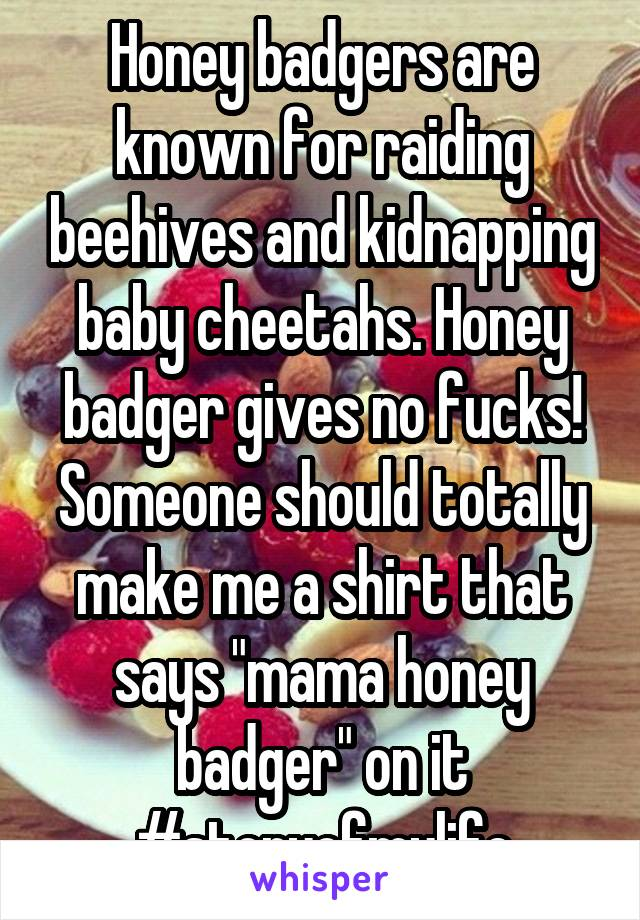 """Honey badgers are known for raiding beehives and kidnapping baby cheetahs. Honey badger gives no fucks! Someone should totally make me a shirt that says """"mama honey badger"""" on it #storyofmylife"""