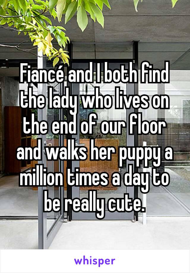 Fiancé and I both find the lady who lives on the end of our floor and walks her puppy a million times a day to be really cute.