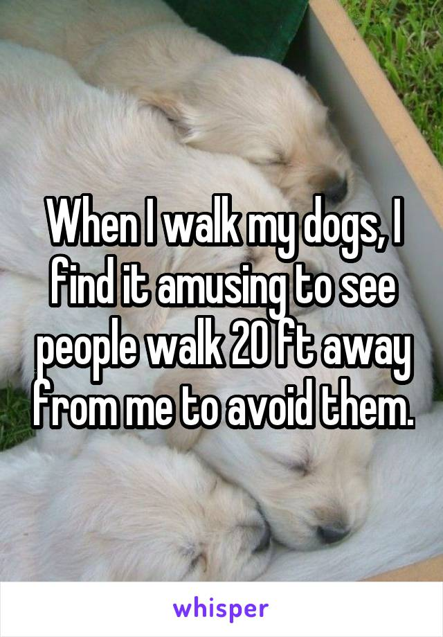When I walk my dogs, I find it amusing to see people walk 20 ft away from me to avoid them.