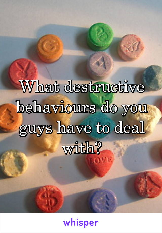What destructive behaviours do you guys have to deal with?