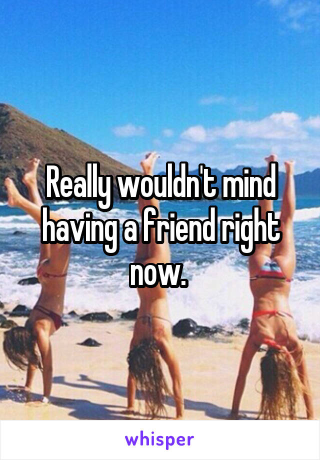 Really wouldn't mind having a friend right now.