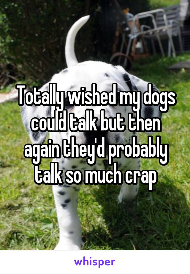 Totally wished my dogs could talk but then again they'd probably talk so much crap