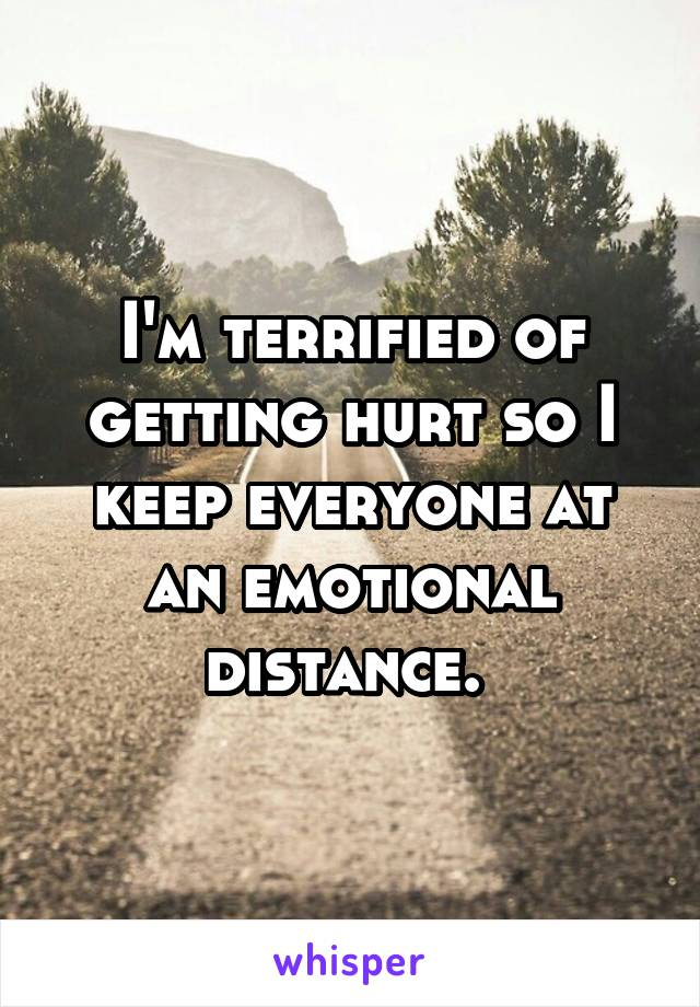I'm terrified of getting hurt so I keep everyone at an emotional distance.