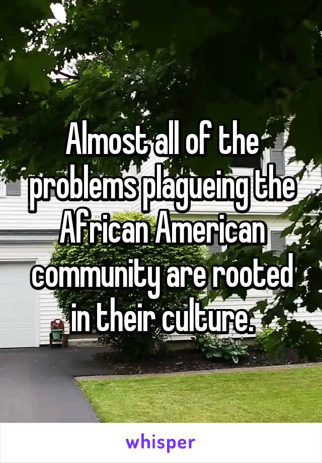 Almost all of the problems plagueing the African American community are rooted in their culture.