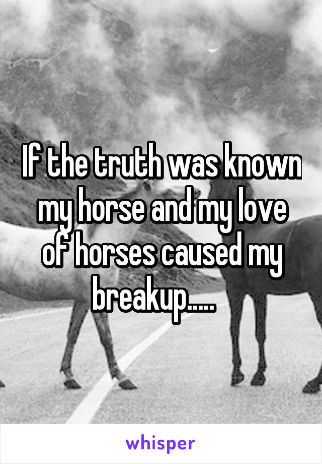 If the truth was known my horse and my love of horses caused my breakup.....