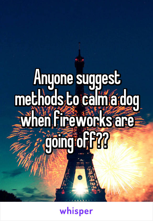 Anyone suggest methods to calm a dog when fireworks are going off??