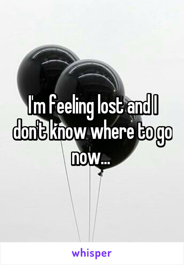 I'm feeling lost and I don't know where to go now...