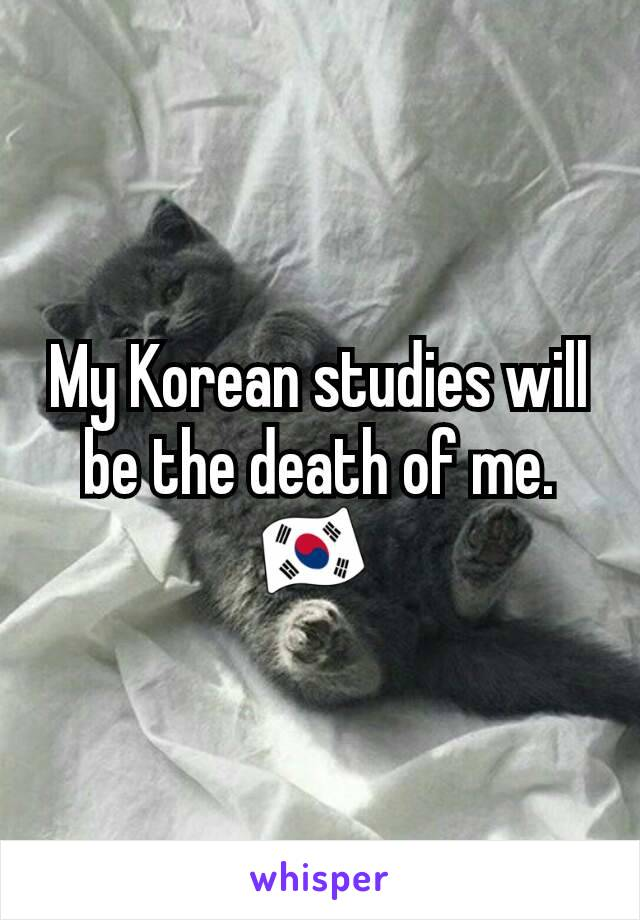 My Korean studies will be the death of me. 🇰🇷