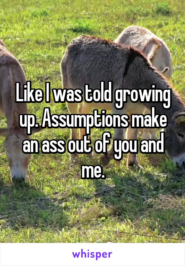Like I was told growing up. Assumptions make an ass out of you and me.