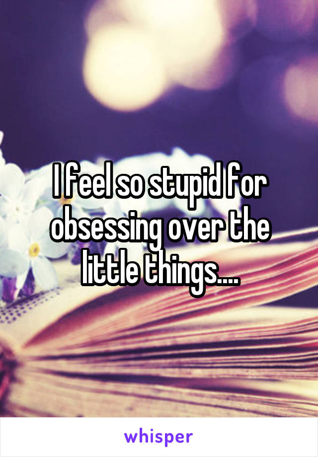 I feel so stupid for obsessing over the little things....