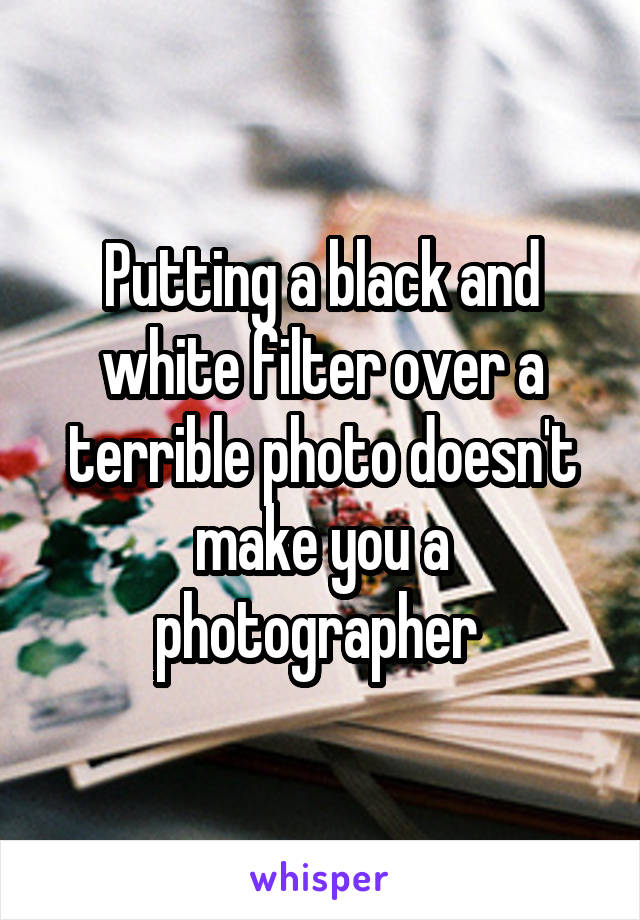 Putting a black and white filter over a terrible photo doesn't make you a photographer