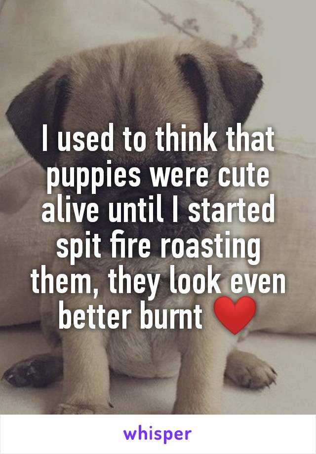 I used to think that puppies were cute alive until I started spit fire roasting them, they look even better burnt ❤️