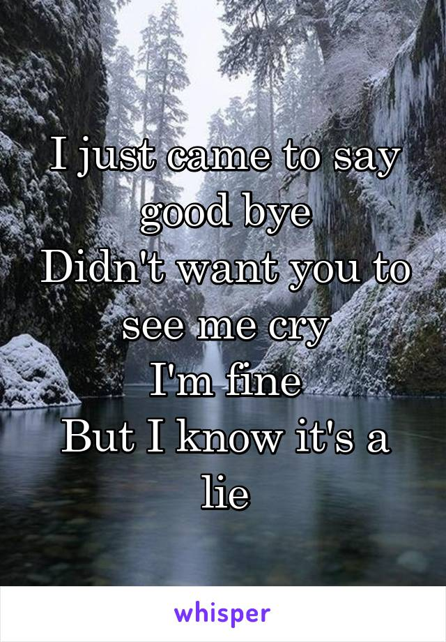 I just came to say good bye Didn't want you to see me cry I'm fine But I know it's a lie