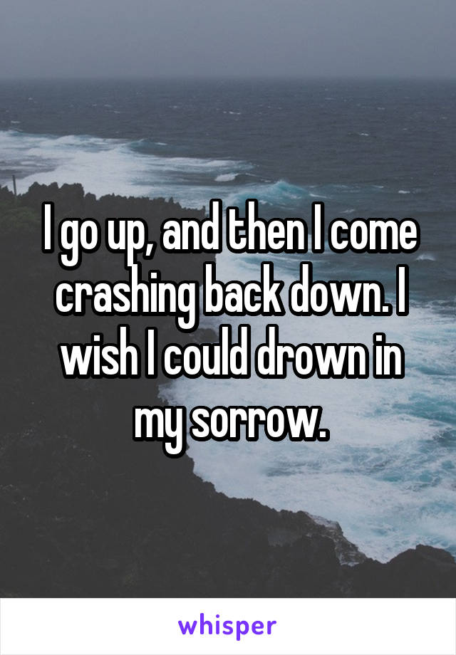 I go up, and then I come crashing back down. I wish I could drown in my sorrow.