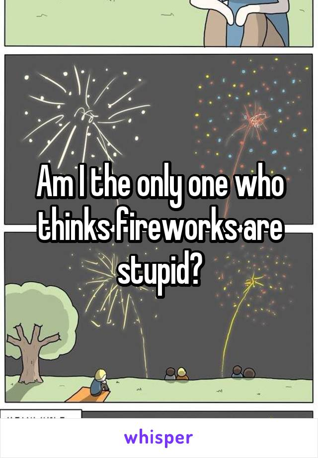 Am I the only one who thinks fireworks are stupid?