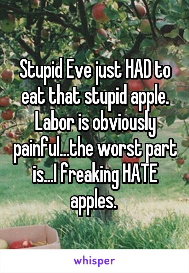 Stupid Eve just HAD to eat that stupid apple. Labor is obviously painful...the worst part is...I freaking HATE apples.