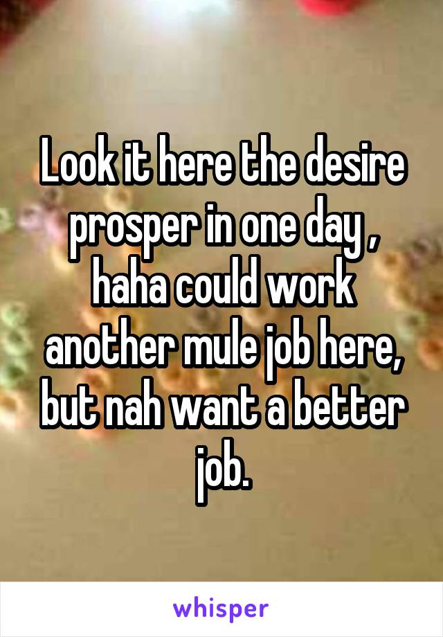 Look it here the desire prosper in one day , haha could work another mule job here, but nah want a better job.