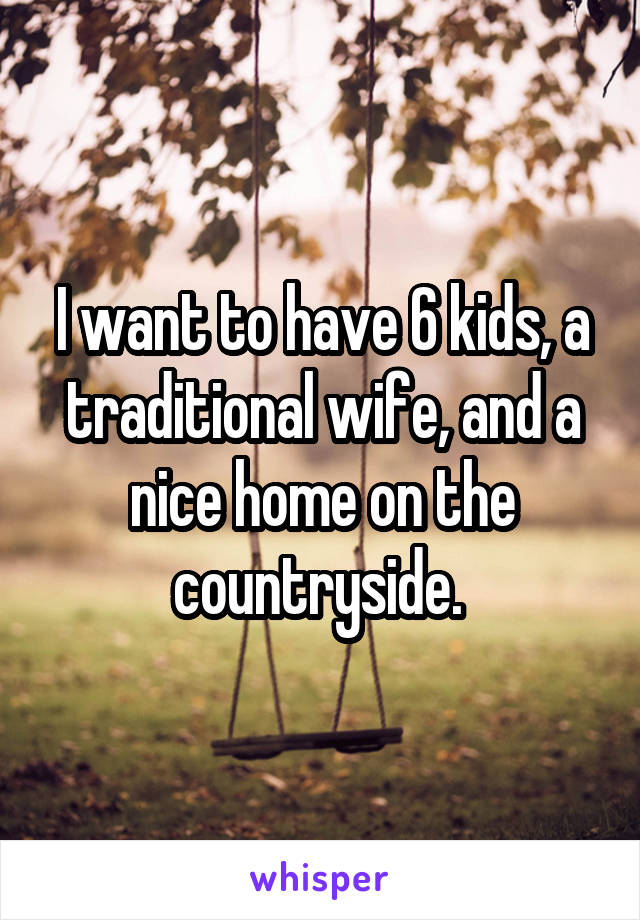 I want to have 6 kids, a traditional wife, and a nice home on the countryside.