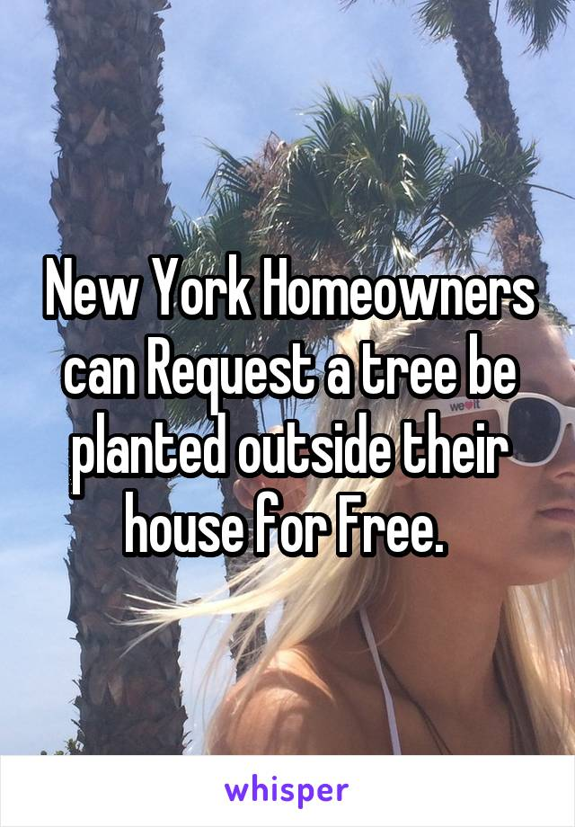 New York Homeowners can Request a tree be planted outside their house for Free.