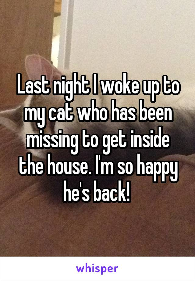 Last night I woke up to my cat who has been missing to get inside the house. I'm so happy he's back!