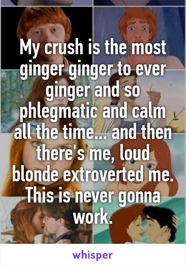 My crush is the most ginger ginger to ever ginger and so phlegmatic and calm all the time... and then there's me, loud blonde extroverted me. This is never gonna work.