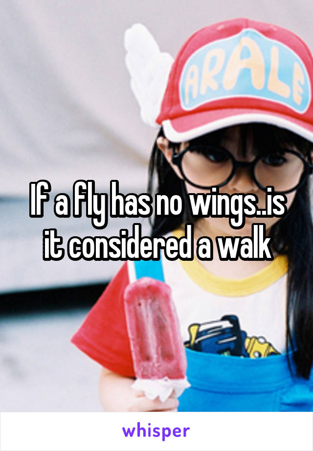 If a fly has no wings..is it considered a walk