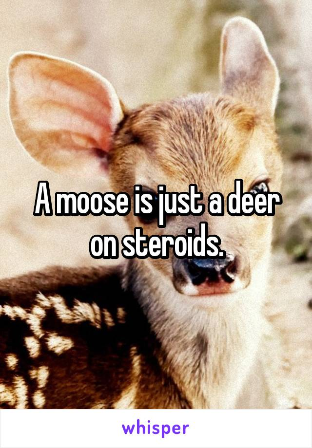 A moose is just a deer on steroids.