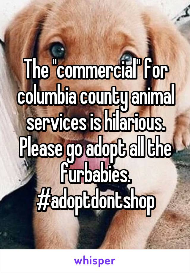 """The """"commercial"""" for columbia county animal services is hilarious. Please go adopt all the furbabies. #adoptdontshop"""