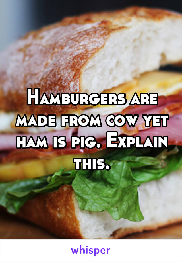 Hamburgers are made from cow yet ham is pig. Explain this.