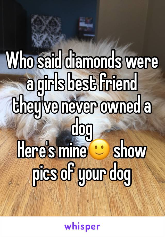 Who said diamonds were a girls best friend they've never owned a dog Here's mine🙂 show pics of your dog