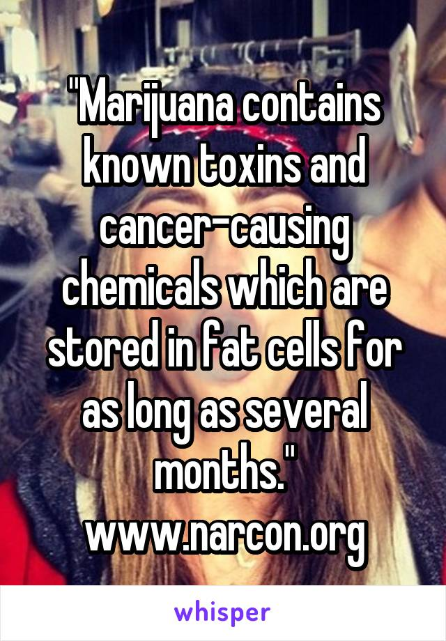 """""""Marijuana contains known toxins and cancer-causing chemicals which are stored in fat cells for as long as several months."""" www.narcon.org"""