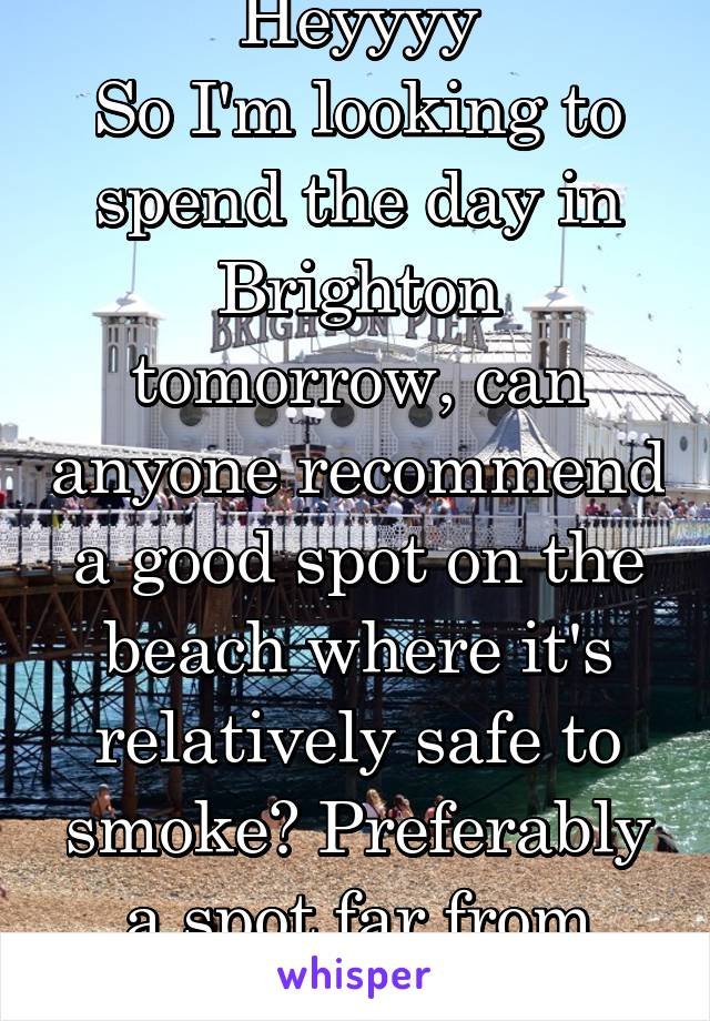 Heyyyy So I'm looking to spend the day in Brighton tomorrow, can anyone recommend a good spot on the beach where it's relatively safe to smoke? Preferably a spot far from crowds