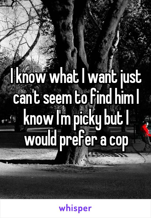 I know what I want just can't seem to find him I know I'm picky but I would prefer a cop