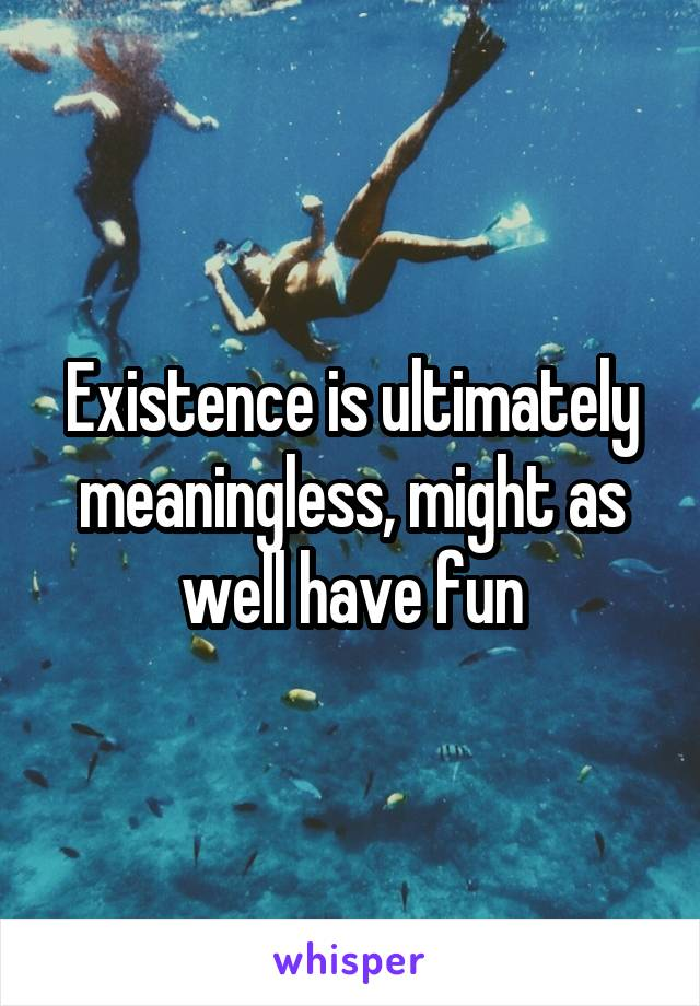 Existence is ultimately meaningless, might as well have fun