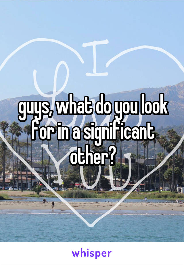 guys, what do you look for in a significant other?