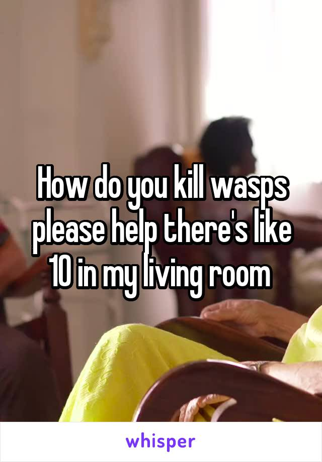 How do you kill wasps please help there's like 10 in my living room