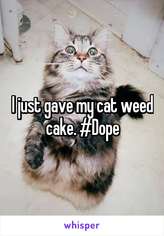 I just gave my cat weed cake. #Dope