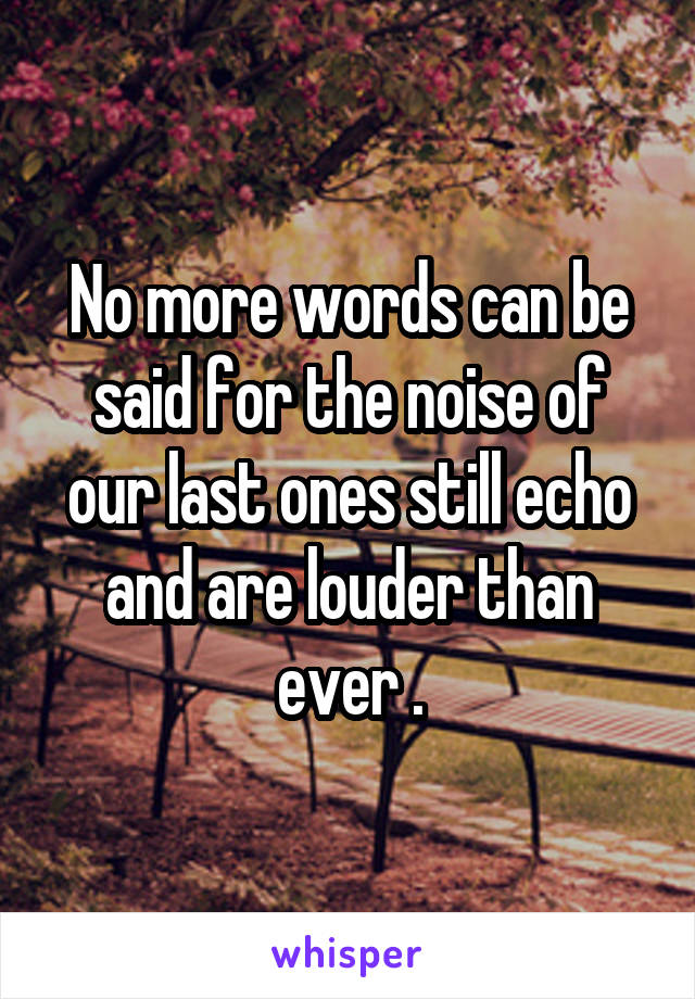 No more words can be said for the noise of our last ones still echo and are louder than ever .