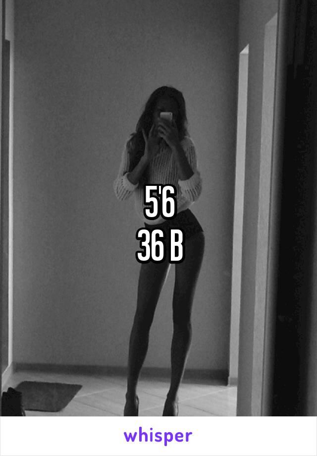 5'6 36 B