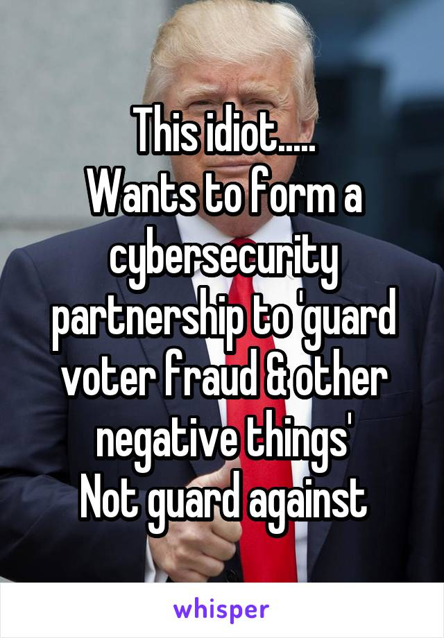 This idiot..... Wants to form a cybersecurity partnership to 'guard voter fraud & other negative things' Not guard against