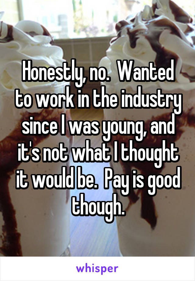 Honestly, no.  Wanted to work in the industry since I was young, and it's not what I thought it would be.  Pay is good though.