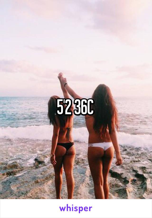 5'2 36C